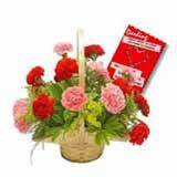Carnations With Card (Midnight)