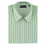 Van Heusen Bright Striped Shirt