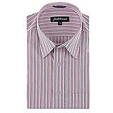 Park Avenue Elegant Striped Shirt